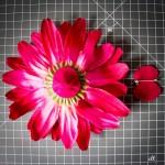 Filz-Kreis ohne Broschennadel wird auf unteren Teil der Deko-Blume geklebt.